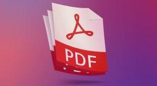 pdfreader 1