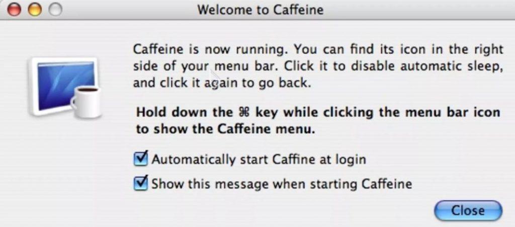 caffeine 33
